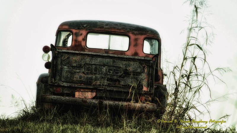 IMAGE: http://Frogdawg.zenfolio.com/img/s10/v16/p397749670-4.jpg